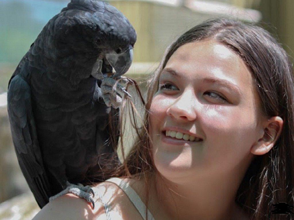 Ballarat Bird World (2)